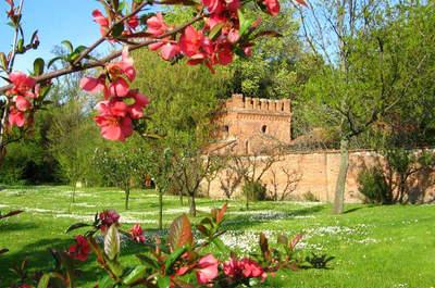 Villa Casalini