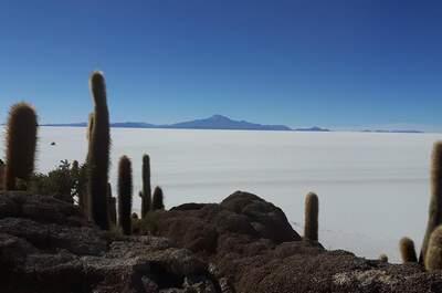 Inca's Paradise